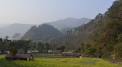 Afternoon view (www.adrenalinenepal.com) Tags: travel camping nepal color colour green landscape asia explore villagelife naturalliving bigbluesky sustainabletourism nepallife campingnepal campnepal