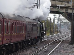 46233 LMS Coronation Class 'Duchess of Sutherland', Bletchley Flyover', 14th November 2015 (OG47) Tags: train engine steam locomotive steamengine steamtrain mainline duchessofsutherland uksteam 46233 princesscoronationclass mainlinerailway thelondonexplorer bletchleyflyover