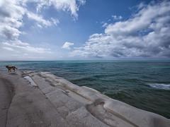 Scala dei Turchi #02 (Samuele Silva) Tags: sea sky panorama costa beautiful clouds landscape mare cielo panoramica scala sicily spiaggia sicilia turchi