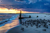 Stormy Sunset (Nikographer [Jon]) Tags: bird fall birds newjersey october oct nj cm capemay 2015 nikographer blackskimmers 20151018d810021784