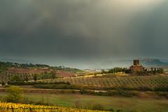 Scorci umbri (84billy) Tags: alberi landscape landscapes villa uva autunno paesaggi vigne paesaggio podere