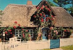 Haus im Norden (Django_ Reinhardt Walter) Tags: casa haus zaun garten reetdach strohdach bewachsen gartenzaun autdoor imnorden eosen