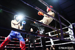Fight Arena IV (Marlon Cocqueel) Tags: boxe haisnes fight arena combat fullcontact champions canon1200d marlon cocqueel