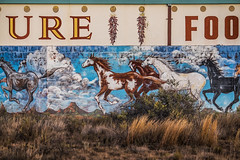 URE | | | FOO (johngpt) Tags: fujifilmxt1 fujinonxf55200mmf3548rlmois nikviveza places abandoned atbudaghers drawing grasses horses wall wallart