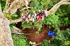 """Macucu Tree Climbing in Amazon. Manaus, Brazil. Feb 2011 #itravelanddance • <a style=""""font-size:0.8em;"""" href=""""http://www.flickr.com/photos/147943715@N05/29878570634/"""" target=""""_blank"""">View on Flickr</a>"""