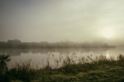 Rumst in the morning fog