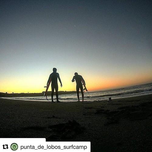 #we love the spirit of our bros!👏👊🏄Repost @punta_de_lobos_surfcamp ・・・ ・・・ Surfbrooo😍🏄💪 Motivación al máximo!😎 Sunset & surfing..what else?? @palpeko #puntadelobossurfcamp #puntadelobos #pichilemusurf