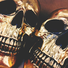 290 | 366 | V (Randomographer) Tags: project366 gold skull halloween decoration decor metallic shiny human bone two pair dead 290 366