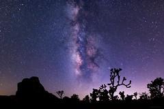 Space Tear (MRC Imagery) Tags: joshuatree milkyway stars astrophotography space nightsky nightscape night galaxy silhouette canon24mmf14ii california universe longexposure joshuatreenationalpark nationalpark