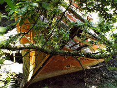 Carquois de Jivaro (L A N I K) Tags: epave bateau bretagne coque