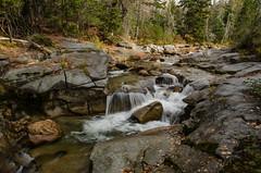 DSC_0193 (Michael P Bartlett) Tags: water streams rocks waterfall trees mtwashington newhampshire