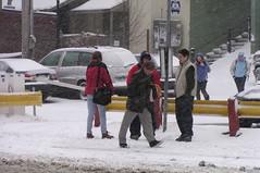 St. John's, Bus Stop (Joseph Topping) Tags: newfoundland canada winter