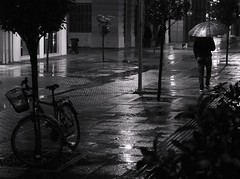Rainy nights in K-town... (kallchar) Tags: rain night rainy water street streetphotography man blackandwhite blackwhite monochrome bicycle trees feet ombrella olympusomdem10