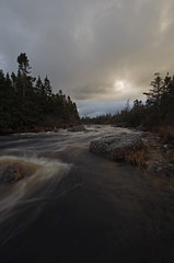nov29 2016 11 (Delena Jane) Tags: delenajane newfoundland ngc river conceptionbaysouth canada slowshutterspeed slowwaters pentaxart
