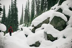 Snowy Hike (JeffAmantea) Tags: snow hike snowy british columbia bc kootenay kokanee glacier provincial park mountains trees tree boulder girl explore outside outdoor sony 50mm alpha a7ii nikkor 14 canada winter fall autumn space