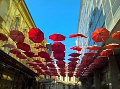 WP_20161118_12_24_29_Rich (vale 83) Tags: red umbrellas microsoft lumia 550 friends wpphoto wearejuxt lunaphoto autofocus colourartaward coloursplosion belgrade serbia