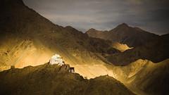 The land of light (srivatsaa) Tags: india ladakh goldenlight evening leh lonelyplanet natgeo natgeoindia incredibleinda incredibleindia shadows shanthistupa