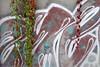 Urban nature (STE) Tags: edera rossa urban parthenocissus quinquefolia