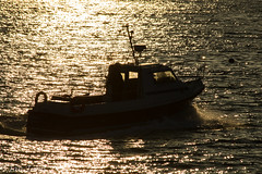 Going fishing (Ian Toms) Tags: fishinglife guernsey sunrise winter goldenglow water dawn reflection sealife photooftheday goingfishing sea rays sun guernseyharbours fishingboat guernseyfishing guernseystyle sunrays boat golden visitguernsey stpeterport sunlight searide yellow guernseylife fisherman backlight backlit