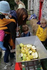 Scratting Apples with a scratter 1 (Local Food Initiative) Tags: permaculture apple day apples press pressing cider group sustainable orchard scrat scratting crusher scratted pulper
