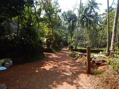 Villages Near Calicut Kerala Photography By CHINMAYA M (3)