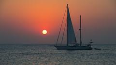 Sailing at sunrise (Emanuel Papamanolis) Tags: challengegamewinner