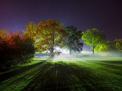 After the fireworks smoke lingers (Nigel Wallace1) Tags: fireworks smoke mist fog atmosphere spooky cold backlit ethereal shadows stars field grass trees yellow orange red green autumn fall season nature landscape olympus omdem1 1240mm