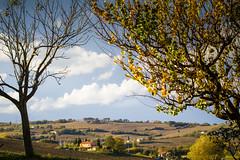 Autunno (gabianelligiovanni) Tags: italy landscape paesaggio autunno autumn marche colori colors lights sky countryside campagna