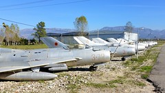 A row with retired Albanian Air Force jetfighters at Tirana Airport, Albania (sirgunho) Tags: a row with retired albanian air force jetfighters tirana airport albania shenyang f6 cn 7912 serial 372 7114 3304 334 3404 344 mikoyan gurevich mig19s 1304 304 7128 378 1303 303 7117 377 stored mig 19