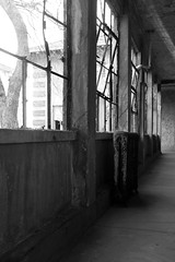 (-IJSC-) Tags: ellisisland abandoned asylum urbanexploration urbandecay ellisislandimmigranthospital abandonedhospital abandonednyc abandonednewyorkcity