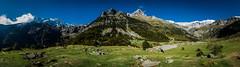 Llanos de Lalarri (Huesca) (soniagu) Tags: pineta huesca pirineos naturaleza panoramica paisaje