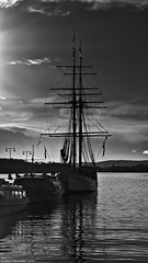 The Great Escape. (Neil. Moralee) Tags: neilmoralee norway2016neilmoralee boat shit harbor harbour sail tall ship sailor water ocean sea mast rigging sails canvas clipper black white bw blackandwhite sdunshine monochrome mono neil moralee nikon lumix panasonic lx7 morning norway oslo cold deserted mooring moored anchor