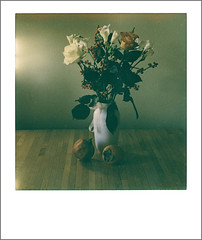 offrande d'automne : bouquet & fruits (JJ_REY) Tags: bouquet fruits naturemorte stilllife instantfilm impossibleproject ip600colorpionergen30 toyofield 45a sironarn150mm rodenstock ambiantlight polaroidback405 colmar alsace france