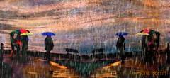 rain rain go away (Sonja Parfitt) Tags: englishbay bc vancouver texture mirror effect manipulated bright red blue green brollies