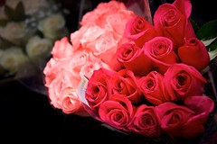 Deetnaraug Hserf (The Good Brat) Tags: fresh roses market