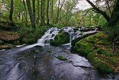 Rio Almofrei (f@gra) Tags: rio river almofrei pontevedra galicia spain silk effect seda efecto paisaje landscape sony sigma agua arroyo cascada aire libre corriente de