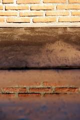 Labirynt... (modestino68) Tags: muro wall mattoni bricks acqua water riflessi reflects zbigniewpreisner