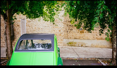 161004-0966-XM1.jpg (hopeless128) Tags: car trees 2cv eurotrip 2016 tree wall france nanteuilenvalle aquitainelimousinpoitoucharen aquitainelimousinpoitoucharentes fr