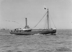 'Hillmeads'  (1907 - 1937)   Geelong, Victoria (Great Lakes Manning River Shipping NSW) Tags: woodenship coastaltrader midnorthcoast shipbuilding glmrsnsw australia greatlakesnsw nswgreatlakes capehawkeharbour tuncurry steamer wallamba wallambaewbst ernestwrightsyt photo6355913885 ernestwrightshipyards mornapoint portstephens northcoaststeamnavigationco historictuncurry historicgreatlakes wrightshipst allentaylorco nsw shipwreck sshillmeads sswallamba jervisbay hillmeadsxglmrs