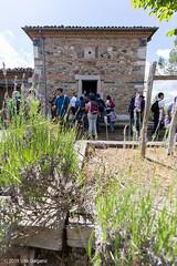 Nei pressi della chiesa della Madonna della Foresta (Vito Galgano) Tags: orata escursione calitri
