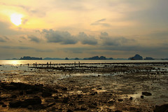 Fishing Crabs at Low Tide - Ao Nang (Krabi) - Thailand (Rogg4n) Tags: travel sunset sea sky sun seascape reflection beach nature clouds landscape thailand fishing sand rocks horizon dramatic crabs krabi andaman aonang karstic canoneos100d efs18135mmf3556isstm
