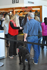 RAWF15 RWintle aDSC_0128 (RoyalPhotographyTeam) Tags: dog toronto ontario canada entrance servicedog volunteer accessibility exhibitionplace royalagriculturalwinterfair rawf royal15 rawf15