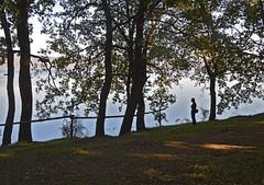 Sulla sponda del lago di Vico (giorgiorodano46) Tags: november autumn italy fall lago leila autunno viterbo lazio lagodivico lagovulcanico monticimini nikonclubit novembre2015 giorgiorodano