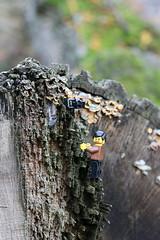 Escalade (pylote) Tags: de la lego autoportrait bretagne bosse aventure lgo