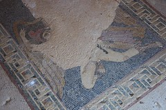 (orientalizing) Tags: italy house floor mosaic sicily hellenistic archaeologicalsite morgantina archaia thirdcenturybc abductionofganymede lateclassicalhellenistic serraorlando houseofganymede