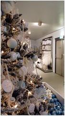 DSCI8536a (aad.born) Tags: christmas xmas weihnachten navidad noel  tuin engel nol natale  kerstmis kerstboom kerst boi kerststal  kribbe versiering kerstshow  kerstversiering kerstballen kersfees kerstdecoratie tuincentrum kerstengel  attributen kerstkind kerstgroep aadborn nativitatis