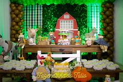 FAZENDINHA DO TULIO 2015 FINAL-6 (agencia2erres) Tags: aniversario 1 infantil festa ano fazenda fazendinha