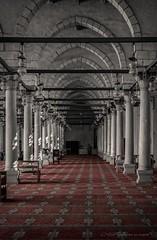 \   ~ (mustafa.elnajjar1995) Tags: red heritage canon mosque cairo jeddah depth hdr islamic ibn  amr    canon50mmf14       alaas canon6d  samyang14mmf28
