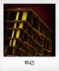 """#DailyPolaroid of 12-11-15 #45 • <a style=""""font-size:0.8em;"""" href=""""http://www.flickr.com/photos/47939785@N05/23708781591/"""" target=""""_blank"""">View on Flickr</a>"""