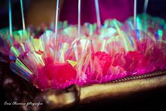 Maria Clara (COfotografia) Tags: brasil riodejaneiro rosa felicidade criana barradatijuca feliz festa menina barra corderosa festainfantil festademenina
